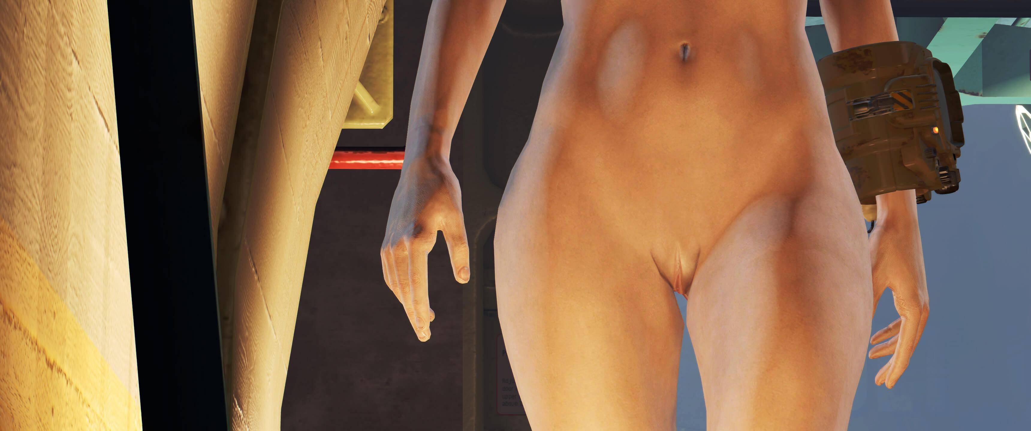 Fallout 4 Nude Mods Get Even Better